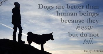 girl and her dog on a mountain in winter