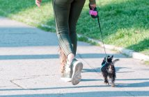 woman walking her little dog on a leash